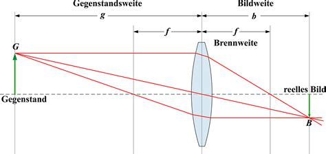linsengesetz lara lioba kas wiki