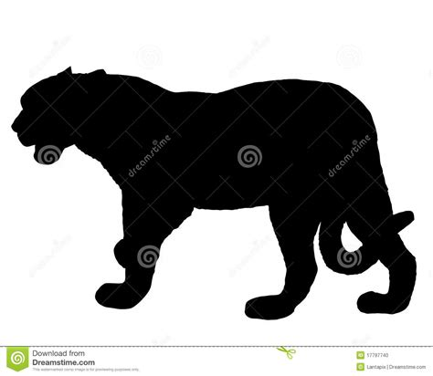 Jaguar silhouette stock vector. Illustration of panthera ...
