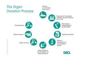 DSO: German Organ Transplantation Foundation (DSO) Organ Transplant