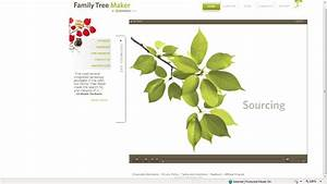 family tree template family tree templates for mac With family tree template for mac