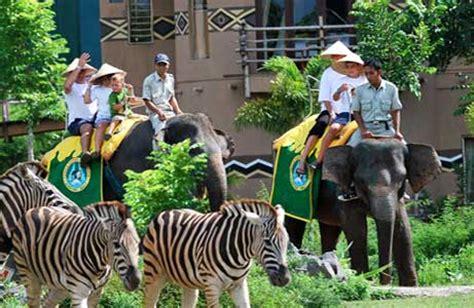 bali safari  marine park segarebalitourcom