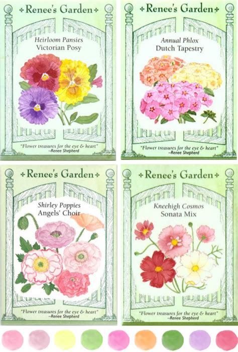 renees garden packet seeds bloomize