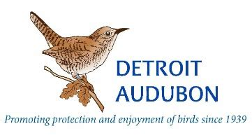 detroit audubon careers and employment indeed com