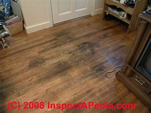 Pet stains marks in buildings a diagnostic guide to for How to remove black urine stains from hardwood floors