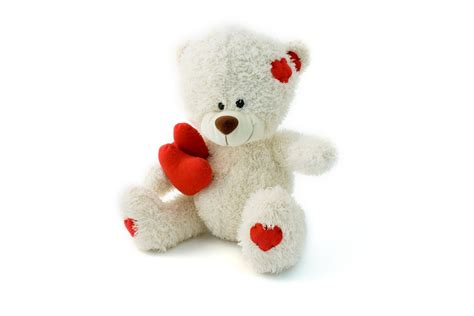 teddy bear pics  hd wallpaper pictures