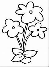 Coloring Flower Pages Printable Sheets Getcolorings Fascinating Crafty sketch template