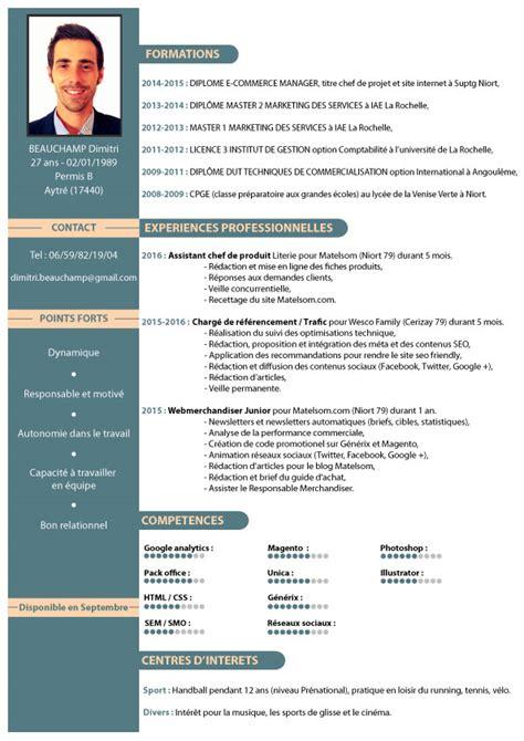 Modele Cv Type by Cv Type Webmarketer