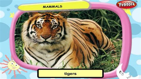 Science For Class 3 : Movement of Animals Science Videos