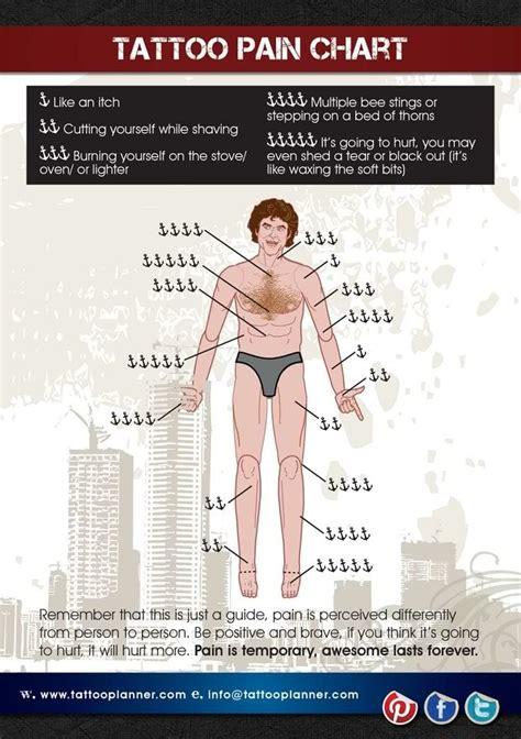 tattoo pain chart     hurt wild tattoo art