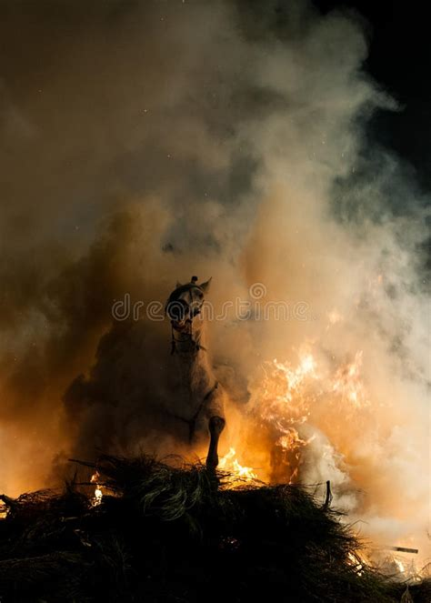 fire horses jumping fear above without horse
