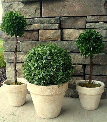 Homemade Topiaries  Can't Wait To Try This For The Dining