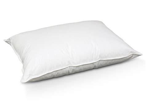 best flat pillow 2pk permaloft never go flat alternative pillow