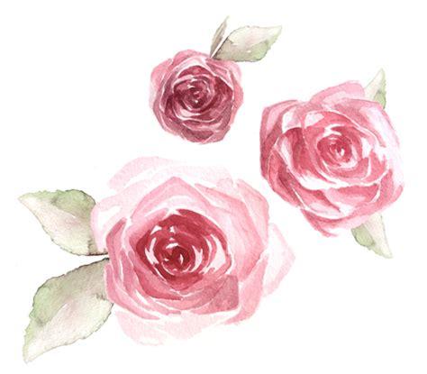 vip rose de carolina herrera fragancia en rosa