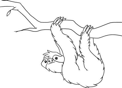 printable sloth coloring pages preschool rainforest