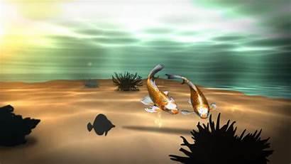 Fish Koi 3d Pond Wallpapers Desktop Backgrounds