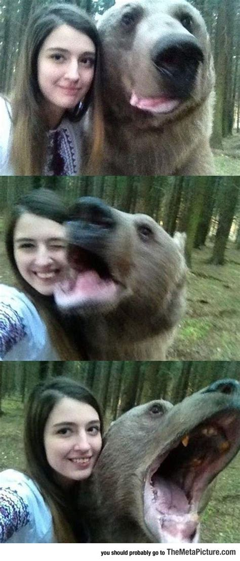 bear selfies  russia