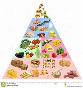 Food Pyramid Stock Illustration  Illustration Of Meat