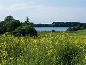 Großer Segeberger See : rundweg gro er segeberger see lupesi travel routes ~ Yasmunasinghe.com Haus und Dekorationen