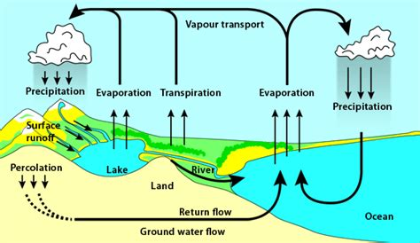 Atmospheric Processes and Conditions: The Water Cycle ...