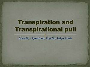 Transpiration and transpirational pull