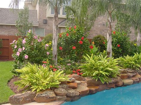 plants for around the pool area for around pools but i like for other areas too except the palm trees renting and moving
