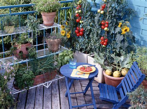 un mini jardin sur mon balcon mon jardin ma maison