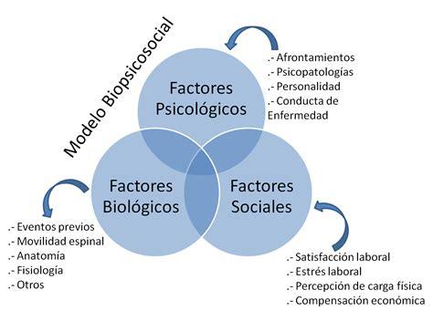 association si鑒e social enfoque biopsicosocial dolor propuestas para una buena praxis fisioterapia en constante movimiento