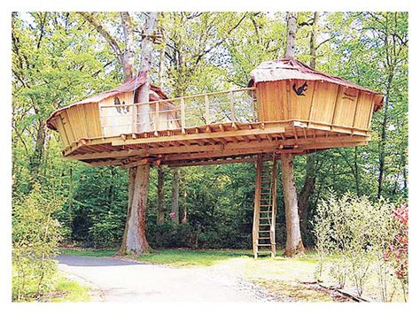 Luxury Plans For Building A Tree House-new Home Plans Design