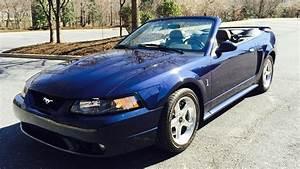 2001 Ford Mustang SVT Cobra Convertible | T190 | Harrisburg 2015