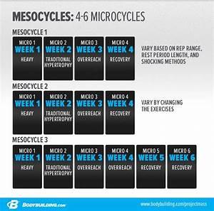 Hypertrophy Workout Plan Pdf