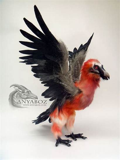 Vulture Bearded Guardian Marrow Anyaboz Deviantart