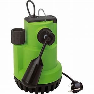 Pompe Piscine Leroy Merlin : pompe vide cave eau charg e guinard nautilus 2 10000 l h ~ Melissatoandfro.com Idées de Décoration