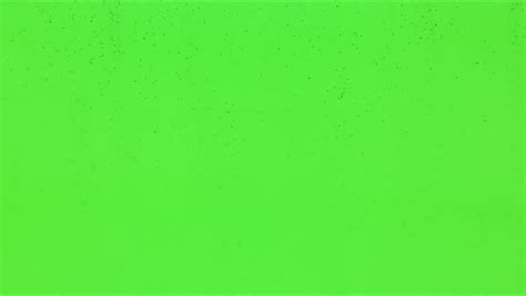 Background Green Screen by Real Snow Against Green Screen Background Stock