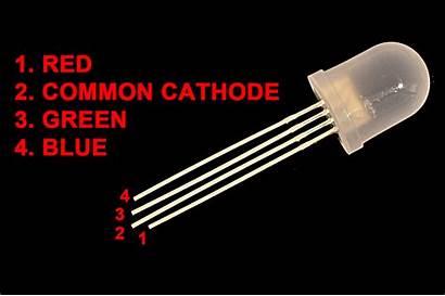Rgb Led Leds 10mm Common Anode Cathode