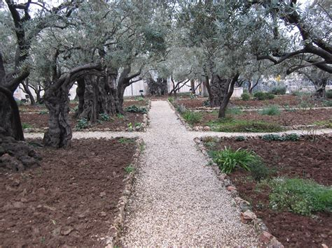 Garden Of Gethsemane  Cindy And Daryl Byler