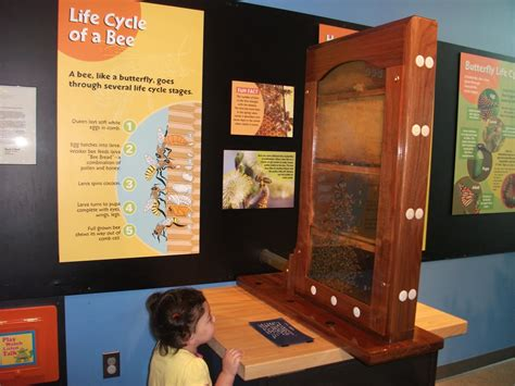 Discovering the Lehigh Valley: Dutch Springs, Crayola ...