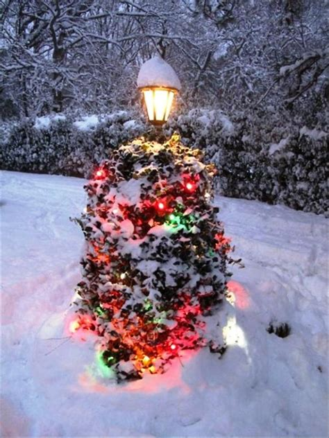 christmas lights decoration  front yards