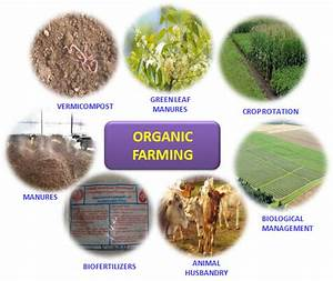 Organic Farming – A Success Story in Tamil Nadu, India ...