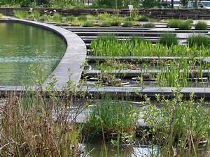Nouveau jardin aquatique sabakunohana for Jardin aquatique