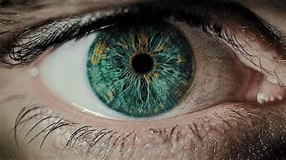 Types Eyes Different Iris Adjust Eye Hole