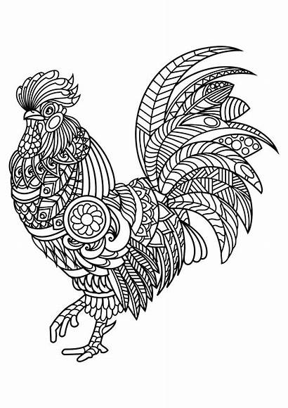 Mandala Coloring Animal Pages Rooster