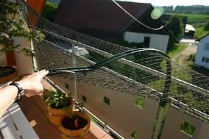 Katzennetz Balkon Unsichtbar : mein balkon vernetzung berhaupt m glich wohnideen pinterest vernetzung m glicherweise ~ Orissabook.com Haus und Dekorationen