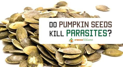 parasite cleanse how to do it the right way