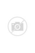 Leo  Jung Taek Woon   ...
