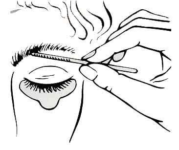 Coloring Eyebrows by Grey Graphite Eyelash Eyebrow Dye Tint Complete Kit Ebay