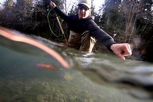 Hoh River Steelhead Fly Fishing Guides