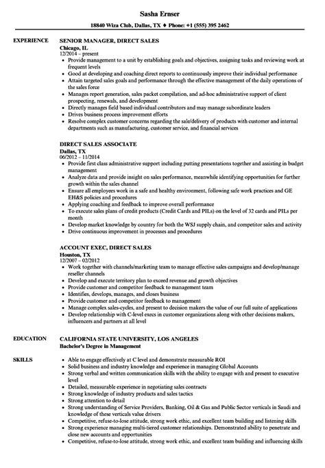 direct sales resume sles velvet