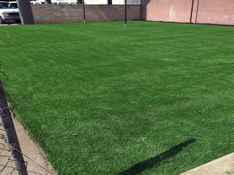 best looking lawn grass artificial grass san francisco california putting greens synthetic