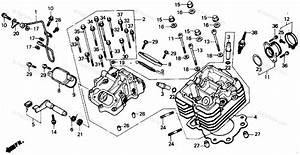 29 Honda Fourtrax 300 Carburetor Diagram
