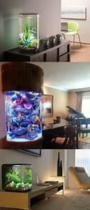 Collection  U00e9poustouflante D U0026 39 Aquariums Originaux